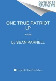 One true patriot : a novel by Parnell, Sean